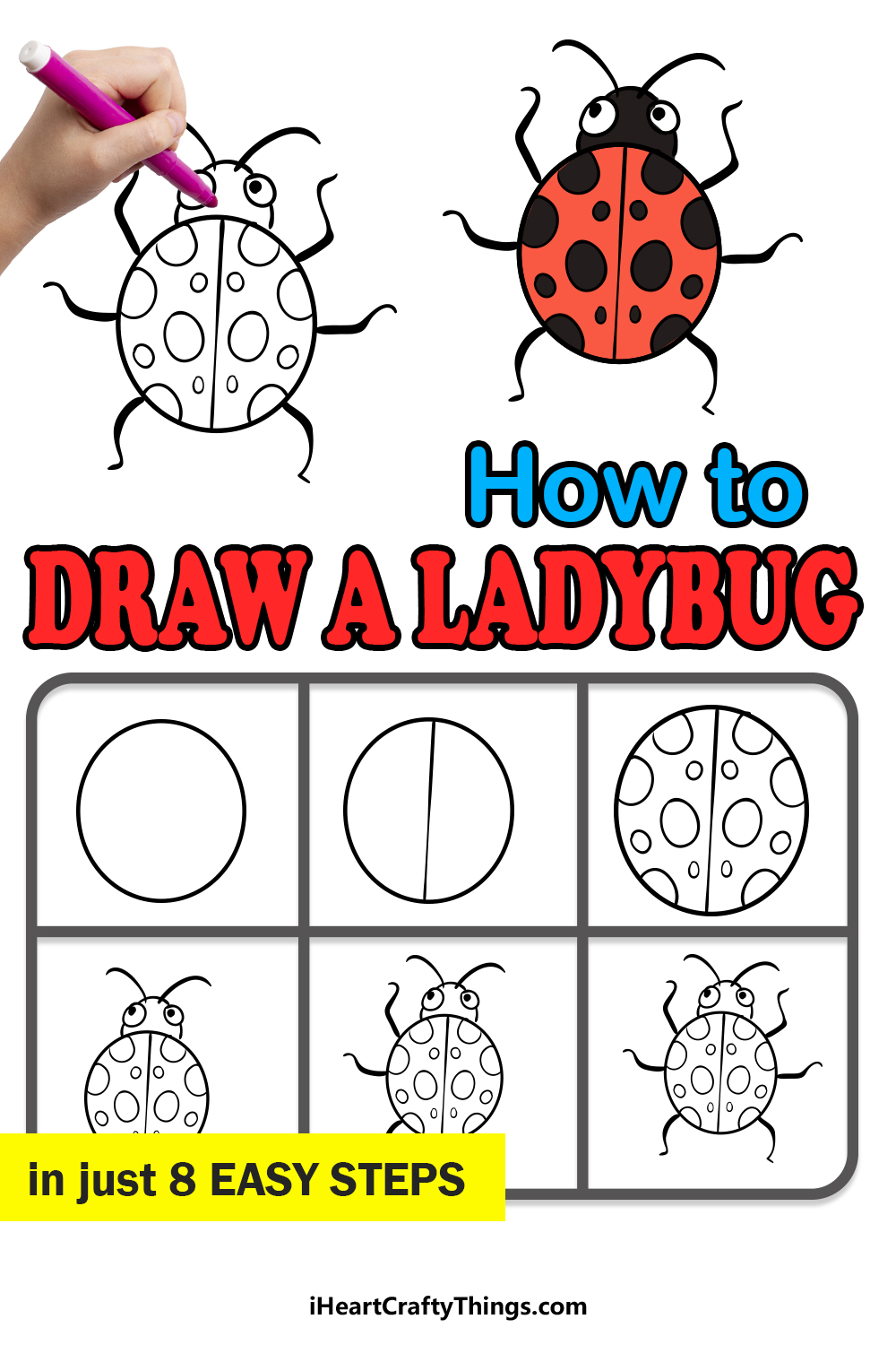 how to draw a ladybug in 8 easy steps