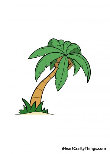 how to draw palm tree image