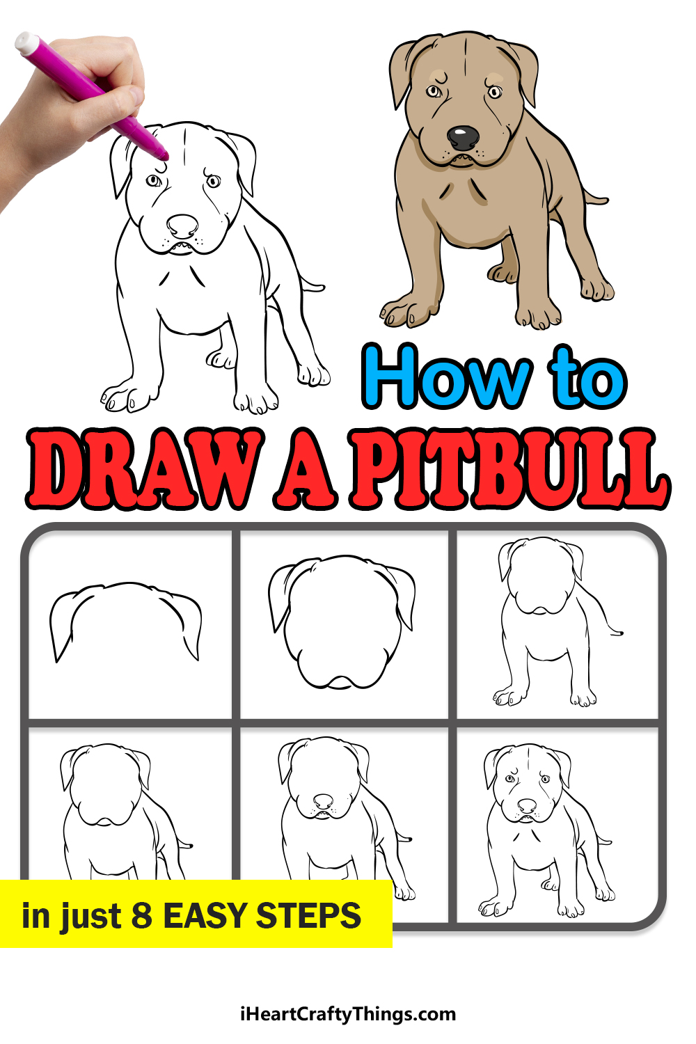 how to draw a pitbull in 8 easy steps