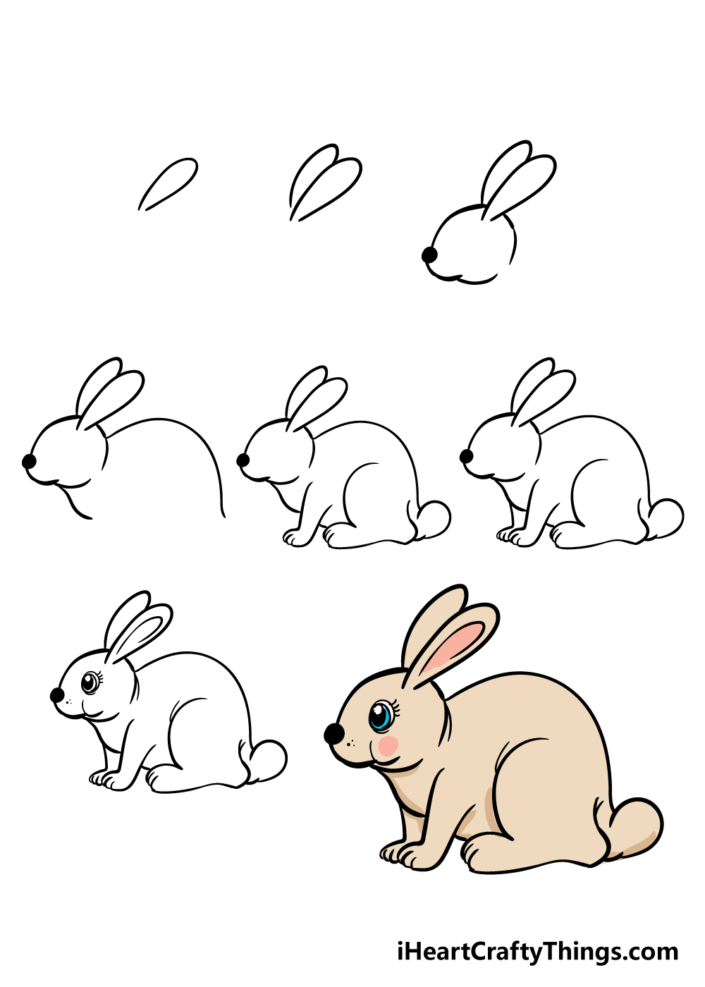 how to draw rabbit in 8 steps