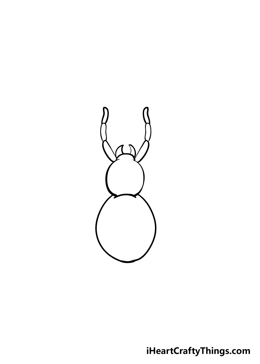 spider drawing step 3