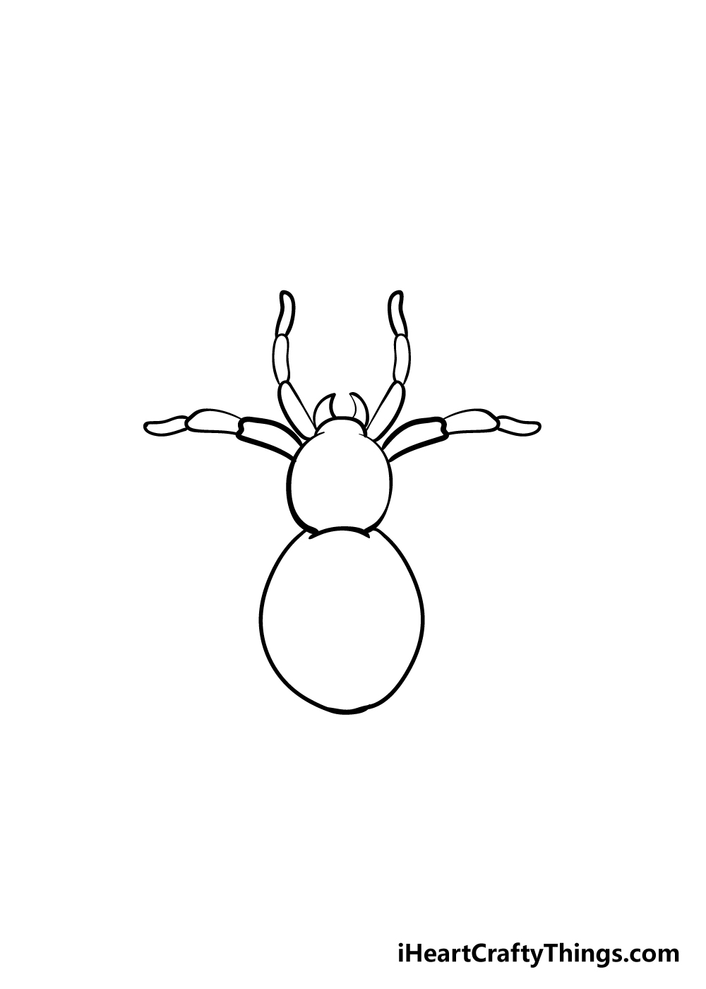 spider drawing step 4