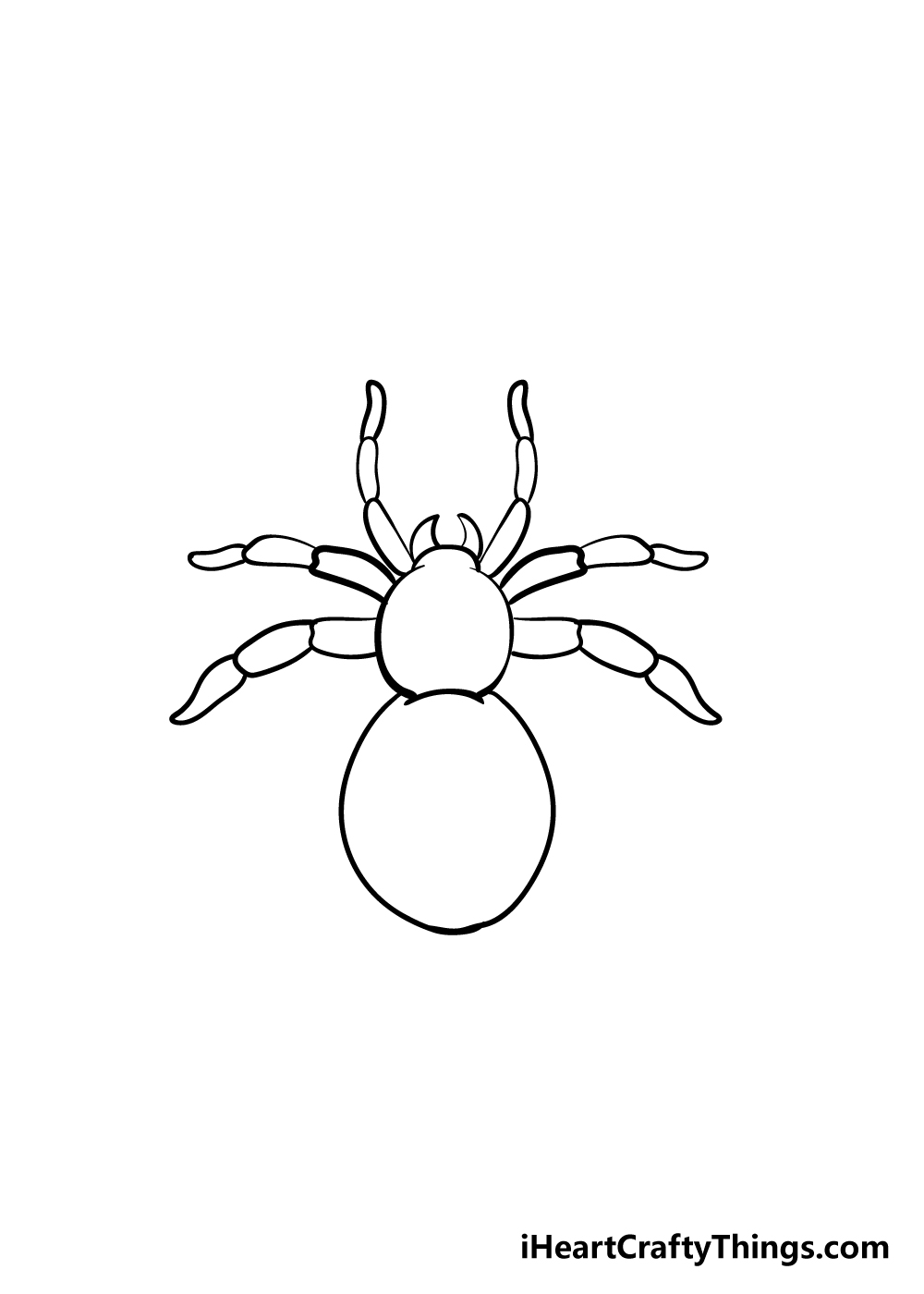 spider drawing step 5