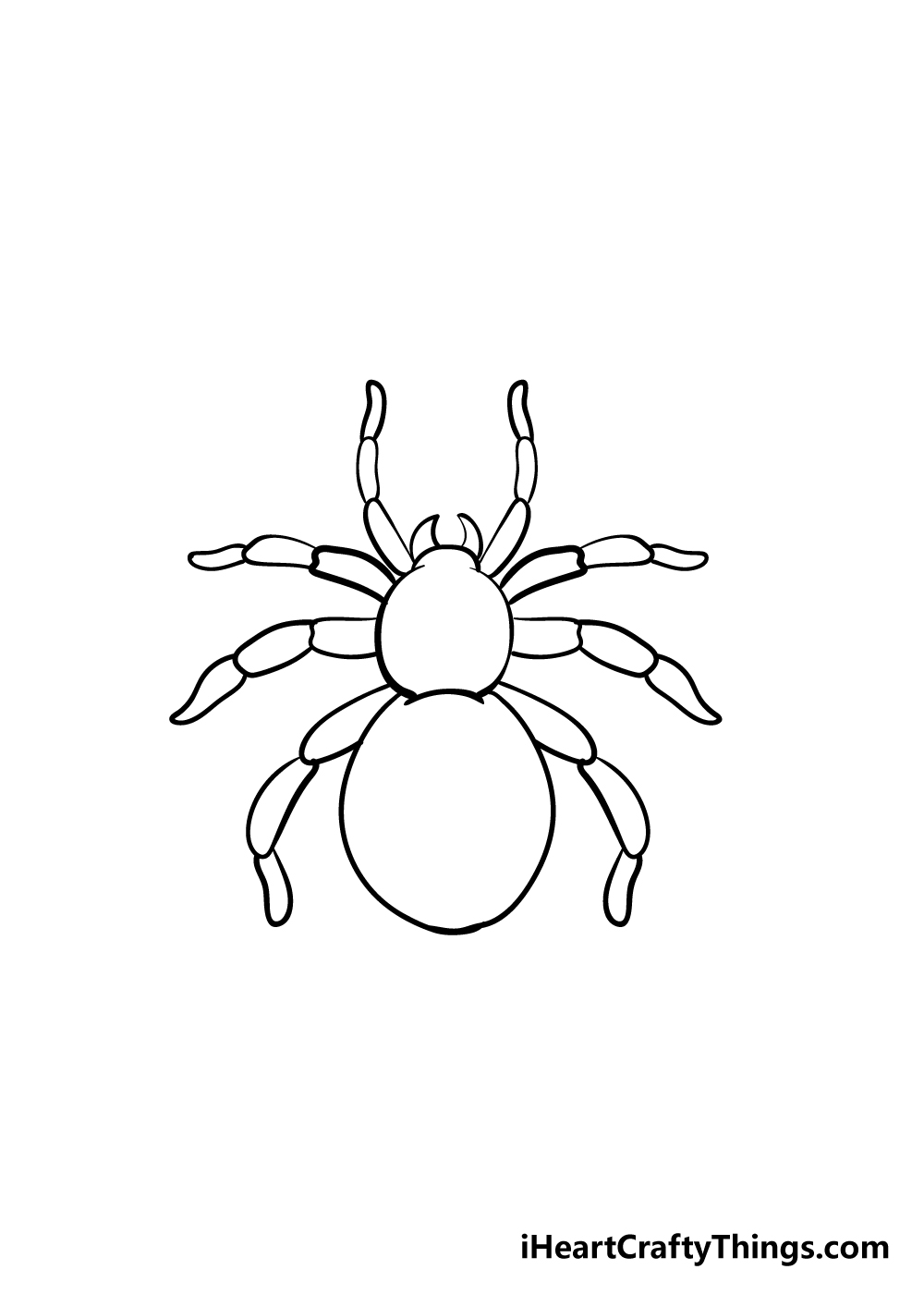 spider drawing step 6