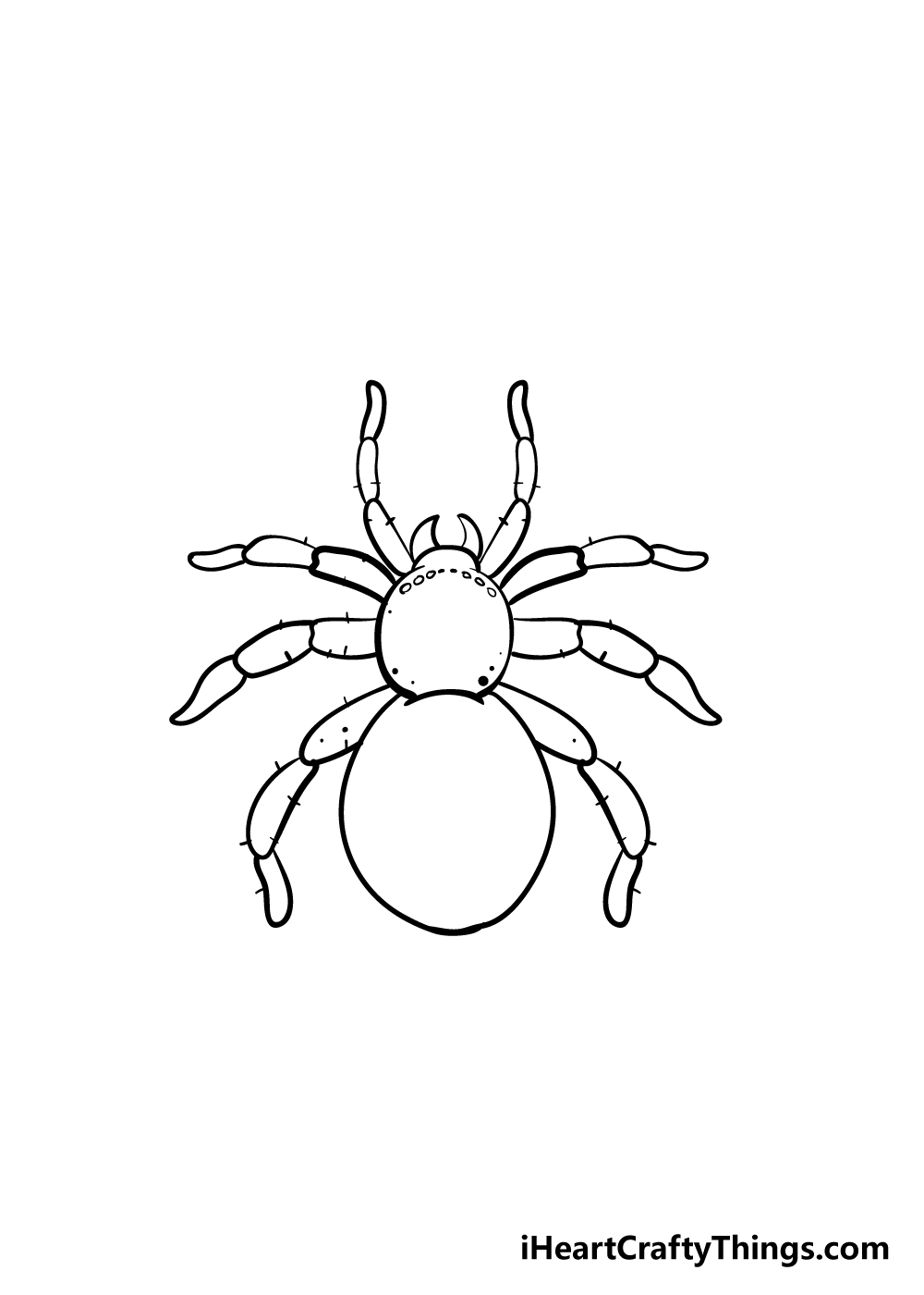 spider drawing step 7