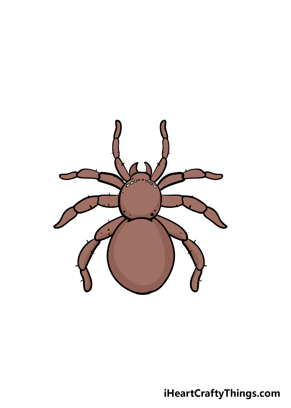 spider drawing step 8