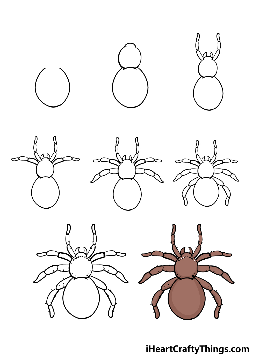 how to draw spider in 8 steps