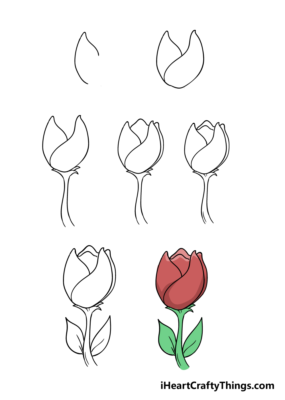 how to draw tulip in 7 steps