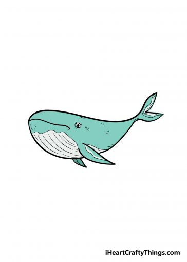 how to draw a whale image
