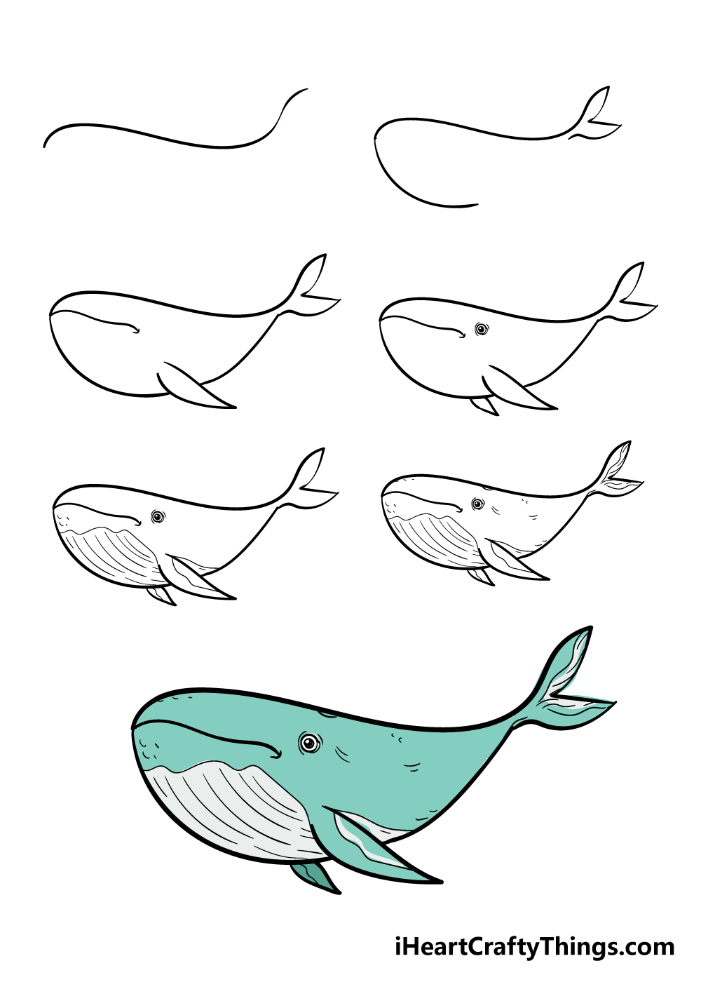how to draw a whale in 7 steps