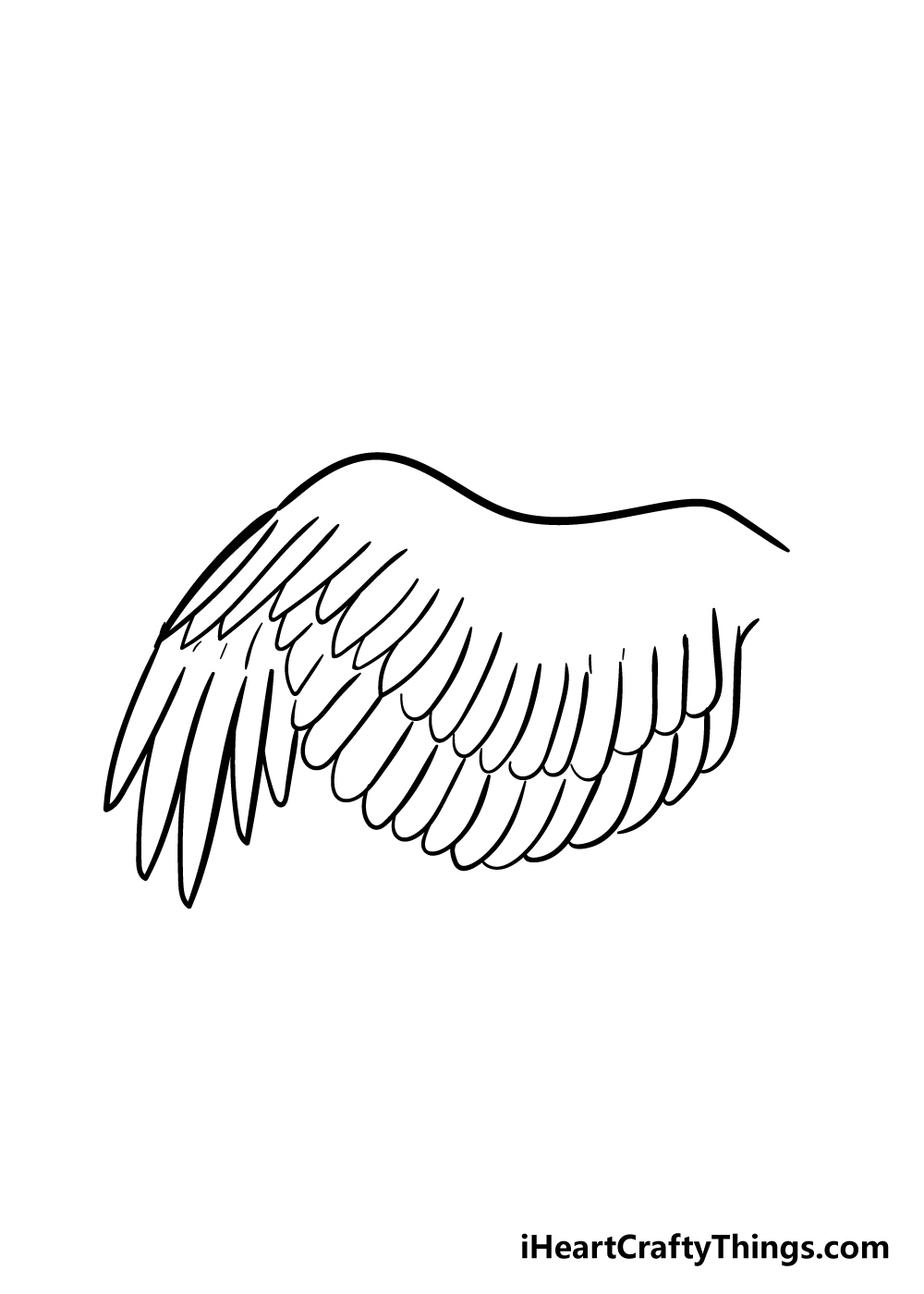 wing drawing step 5