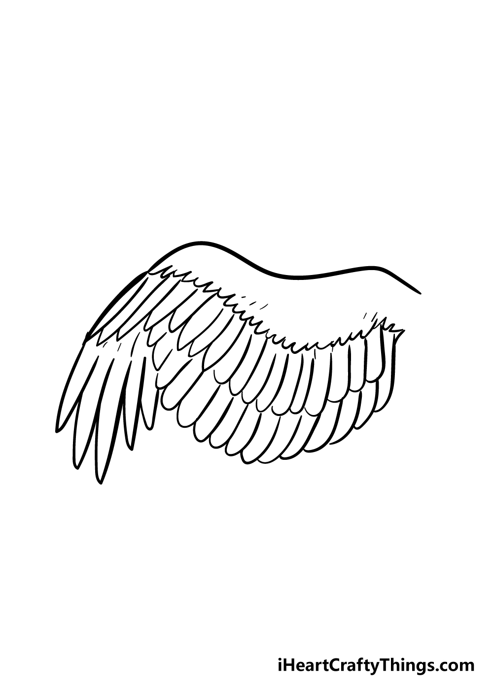 wing drawing step 6