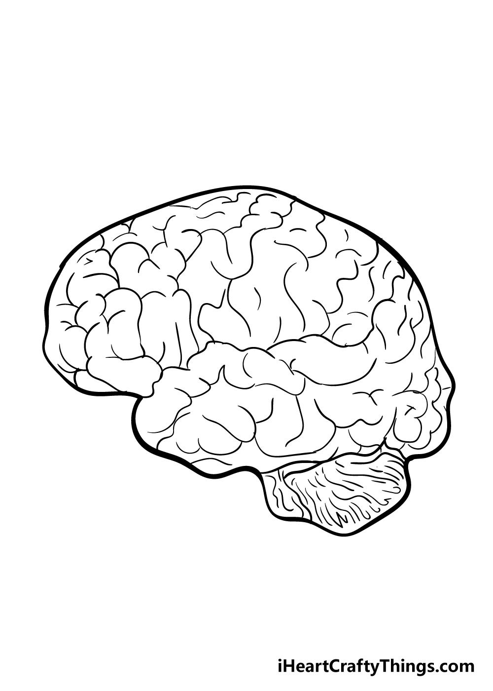 brain drawing step 6
