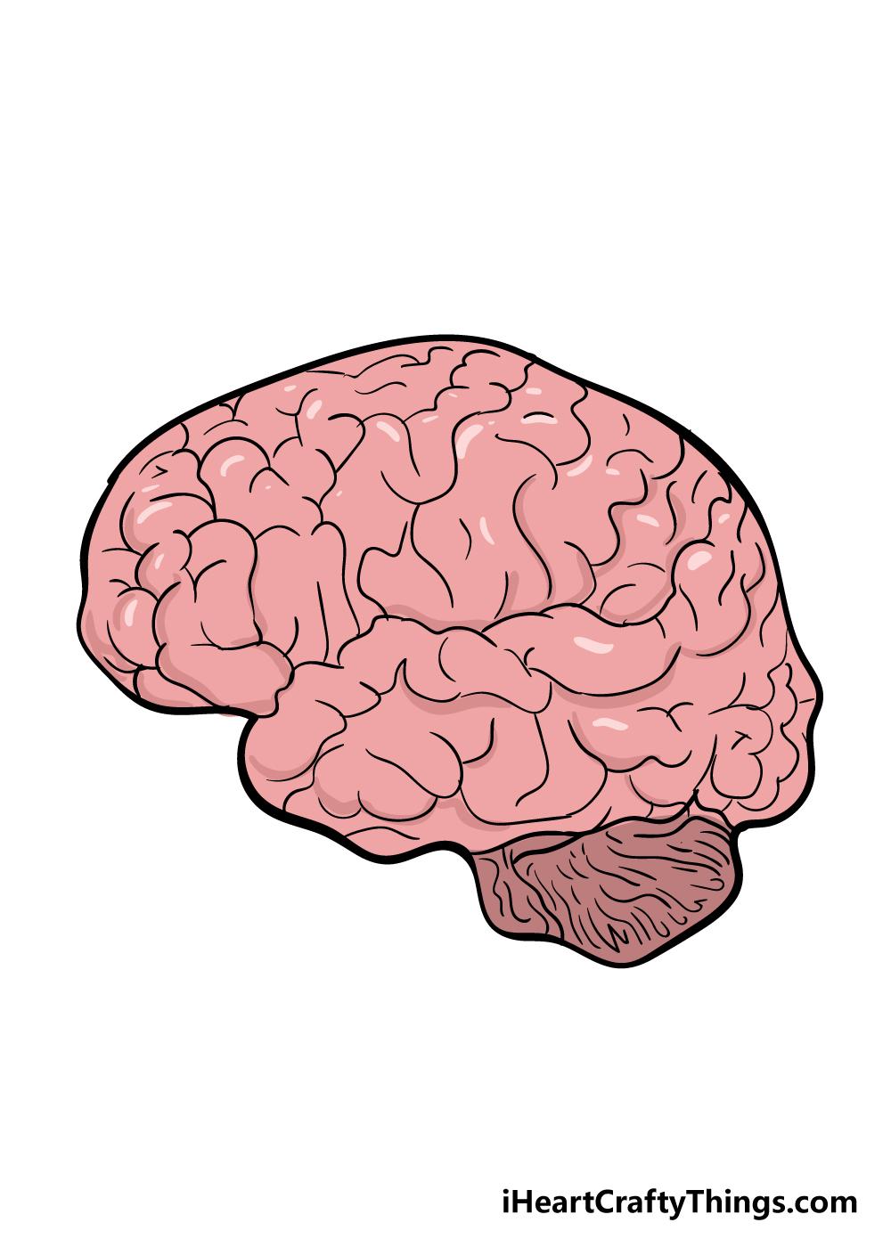 brain drawing step 7