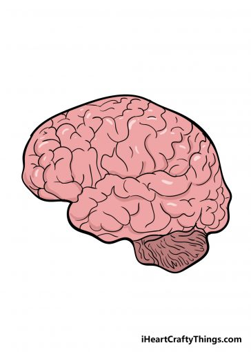 how to draw brain image