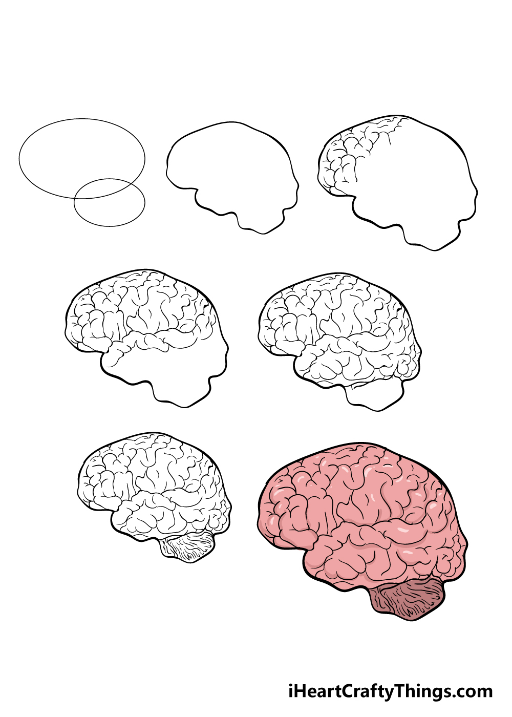 how to draw brain in 7 steps