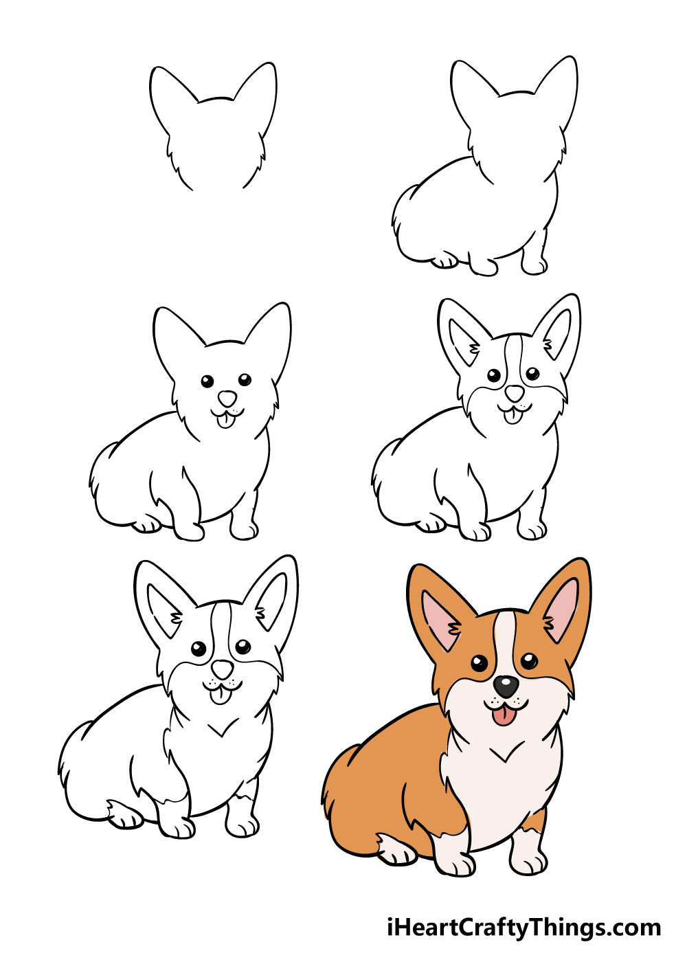 how to draw corgi in 6 steps