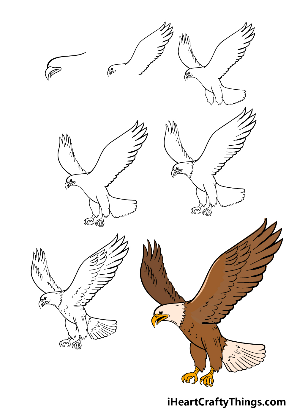 how to draw eagle in 7 steps