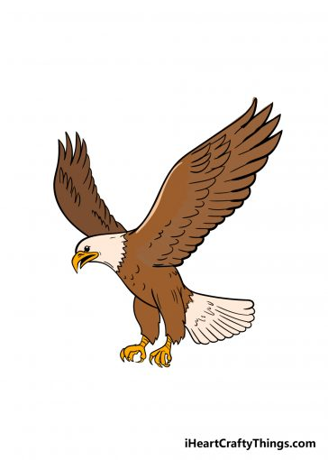 how to draw an eagle image