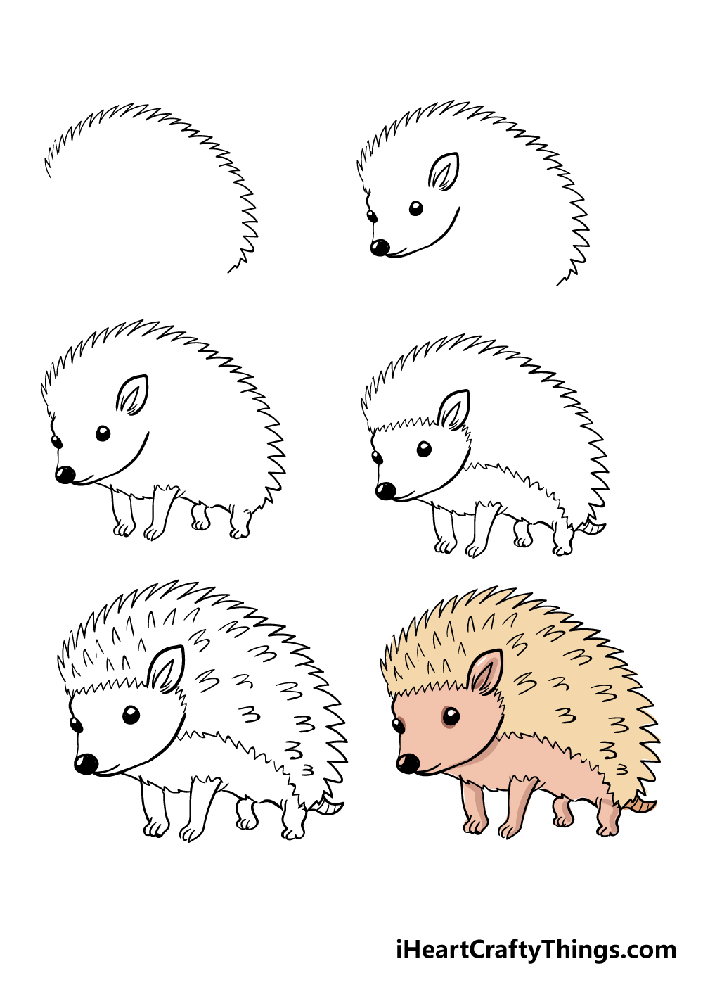 how to draw hedgehog in 6 steps