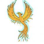 how to draw phoenix image