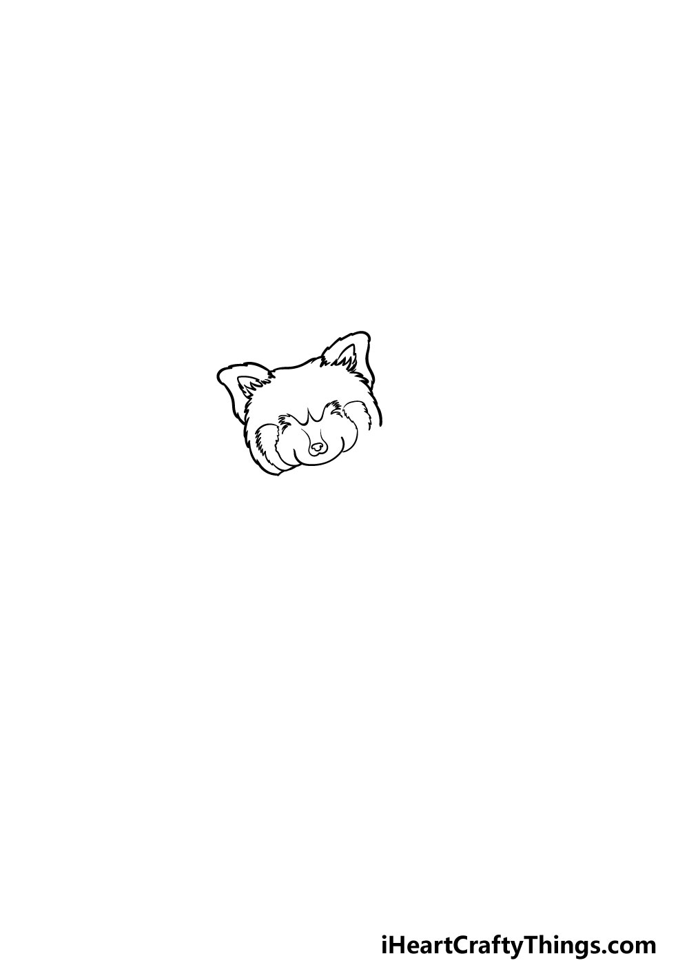 drawing a Red Panda step 1
