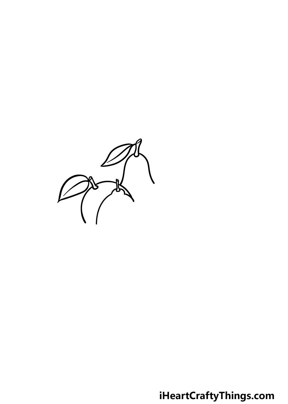 drawing fruits step 1