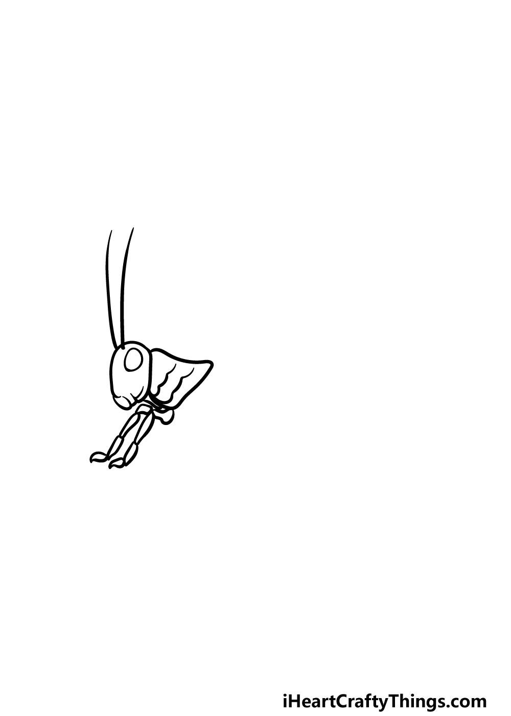 drawing a grasshopper step 2