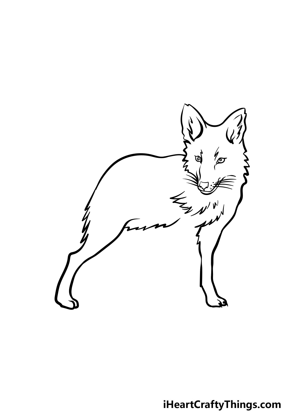 drawing a coyote step 2