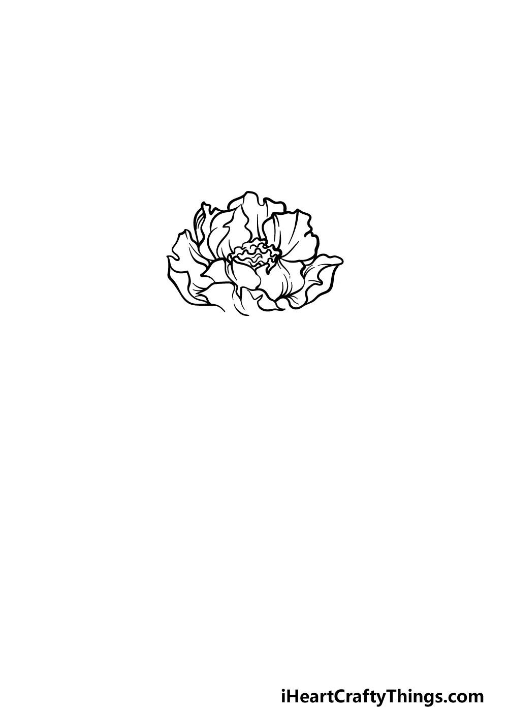 drawing peony step 2