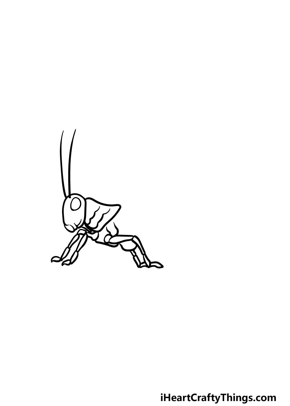 drawing a grasshopper step 3