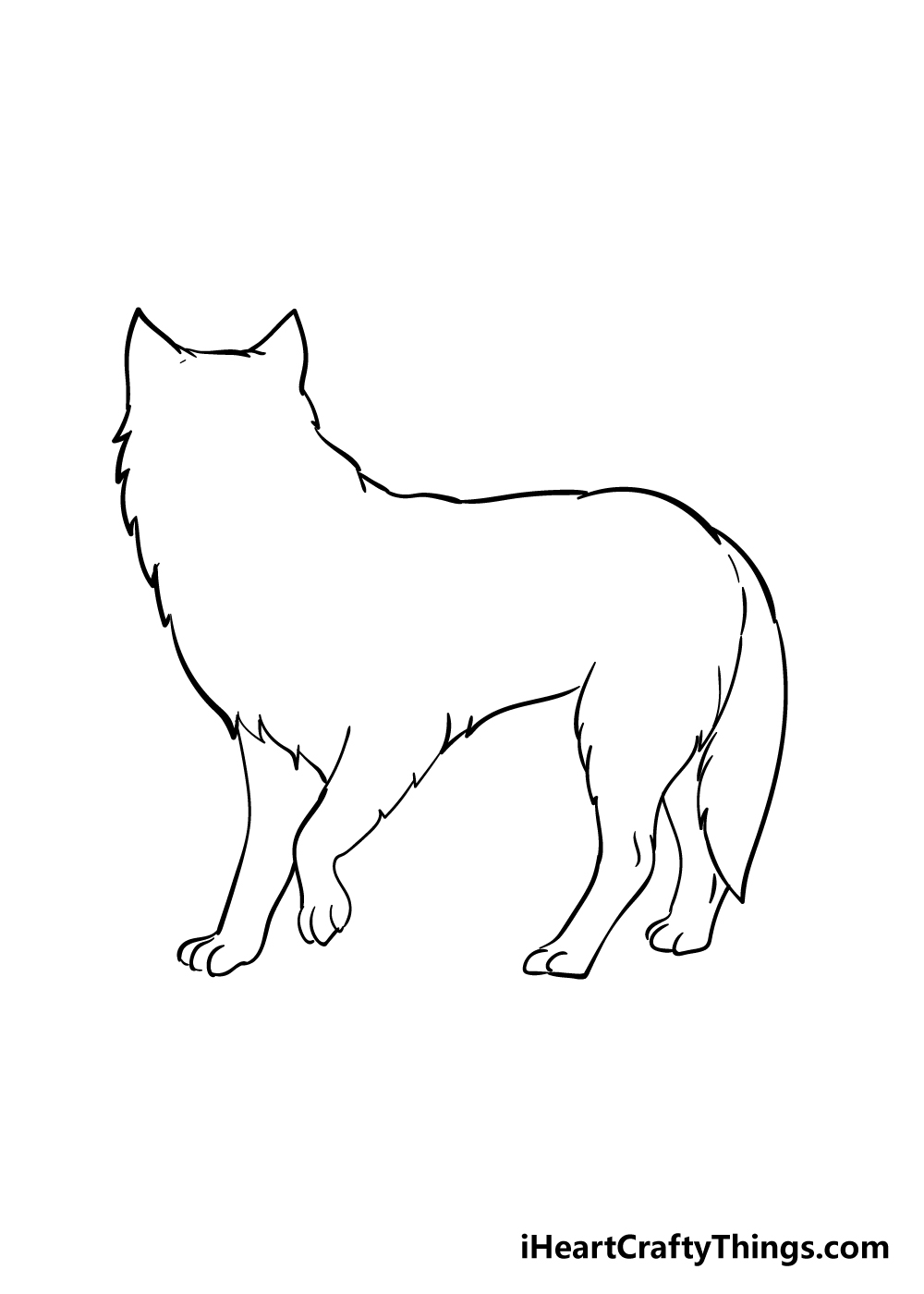 arctic fox drawing step 3