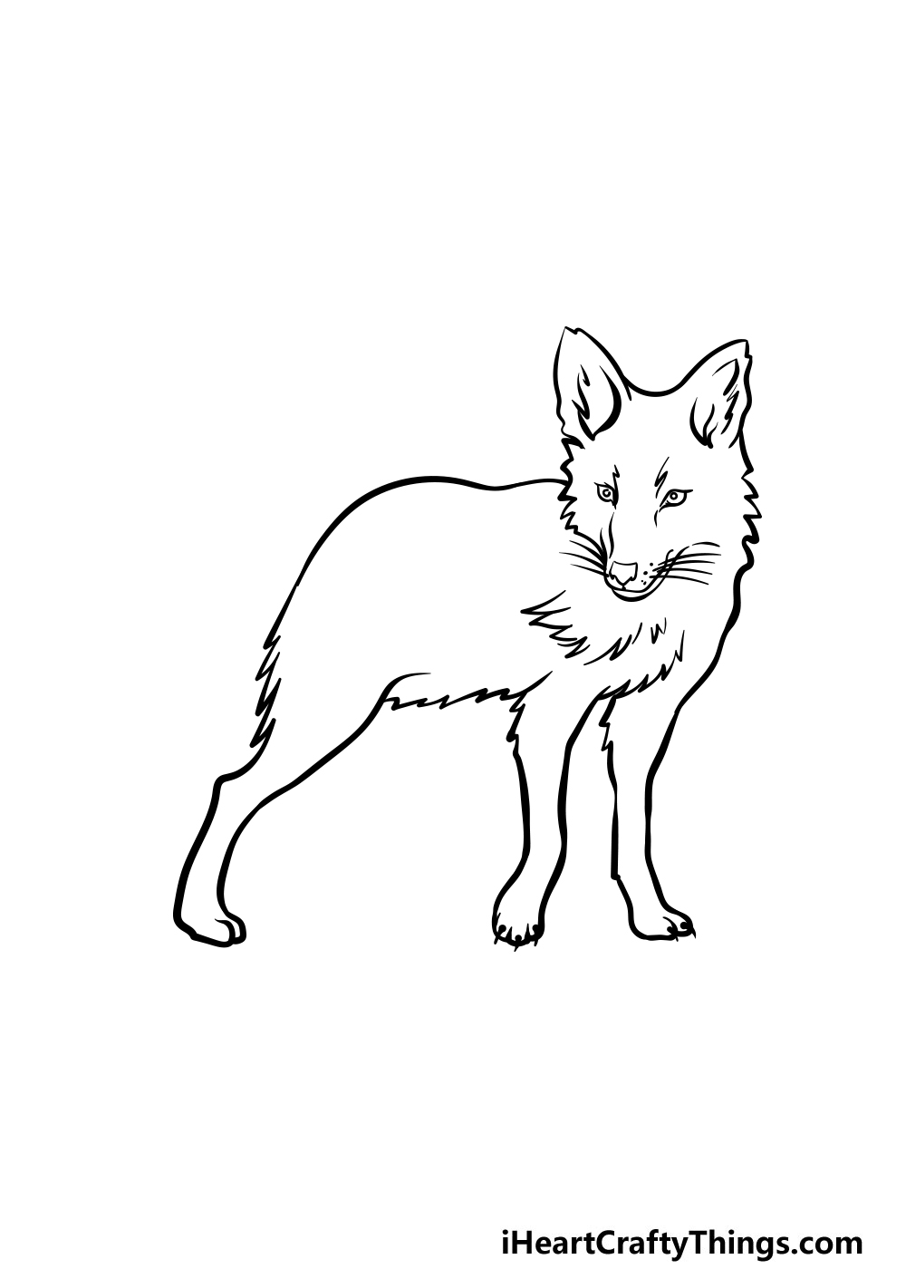 drawing a coyote step 3