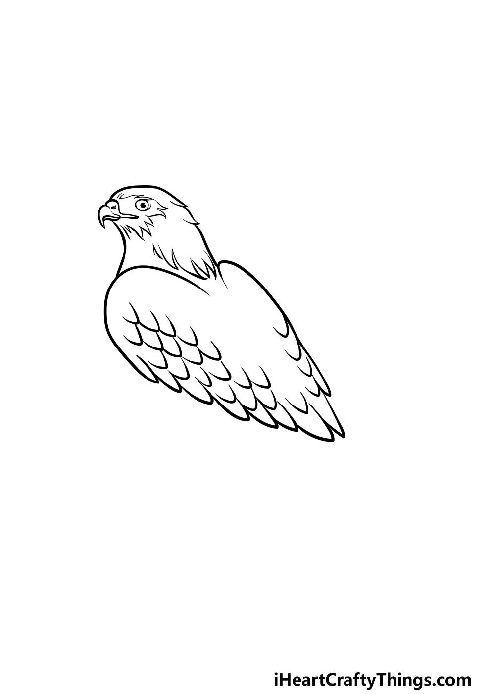 dibujando un halcón paso 3