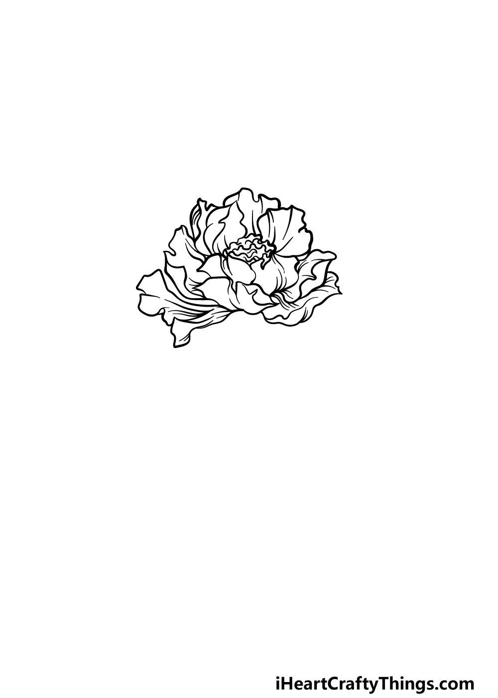 drawing peony step 3