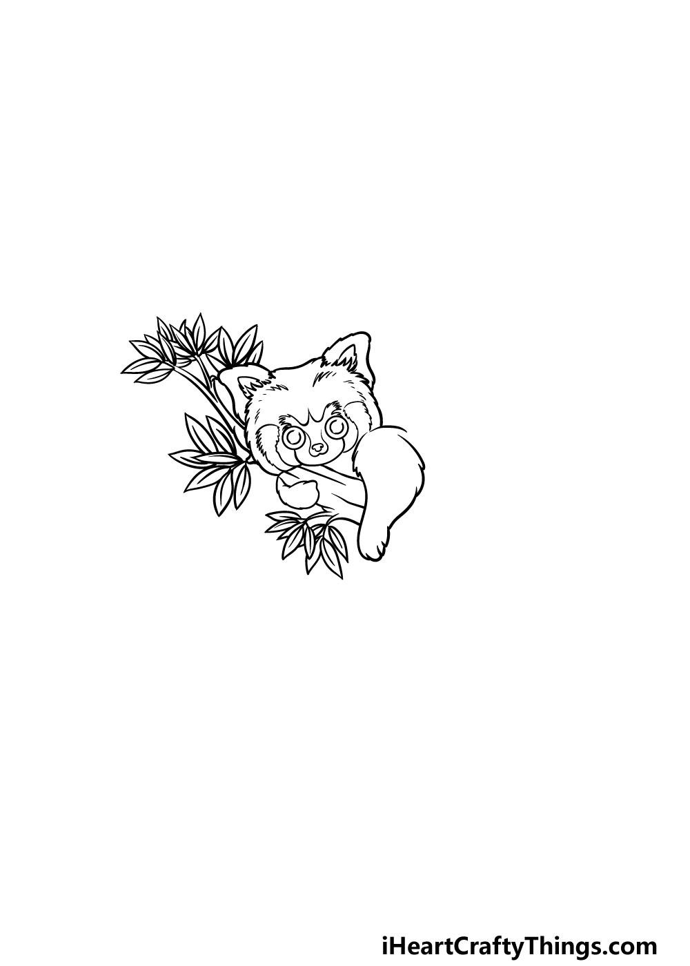 drawing a Red Panda step 3