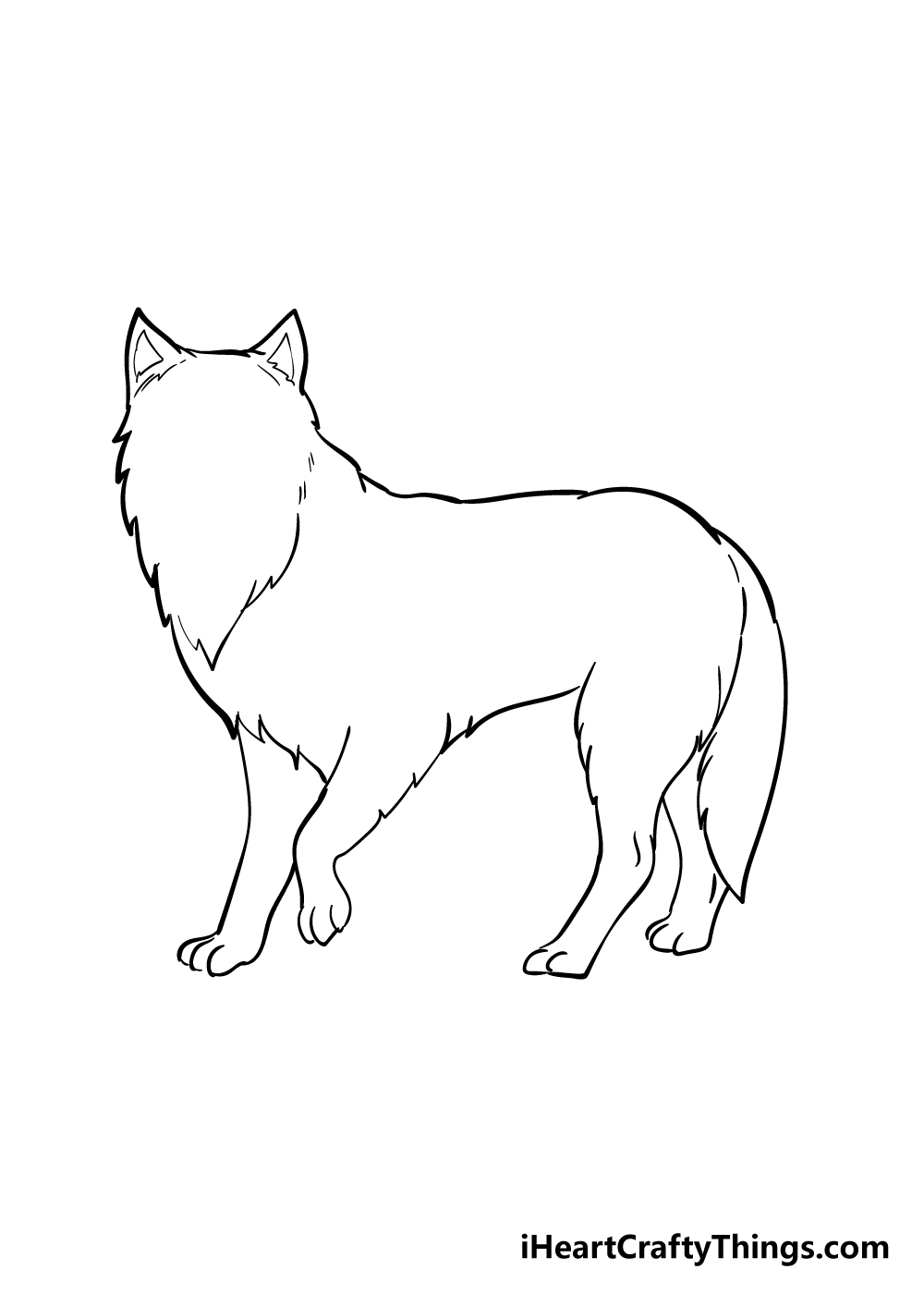 arctic fox drawing step 4