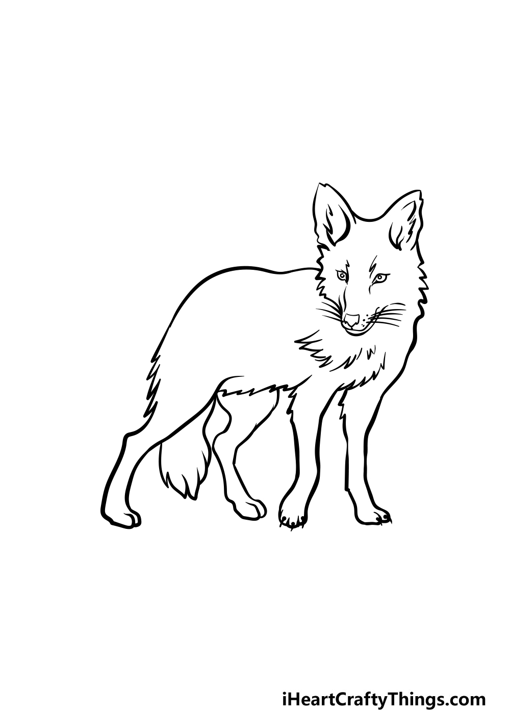 drawing a coyote step 4