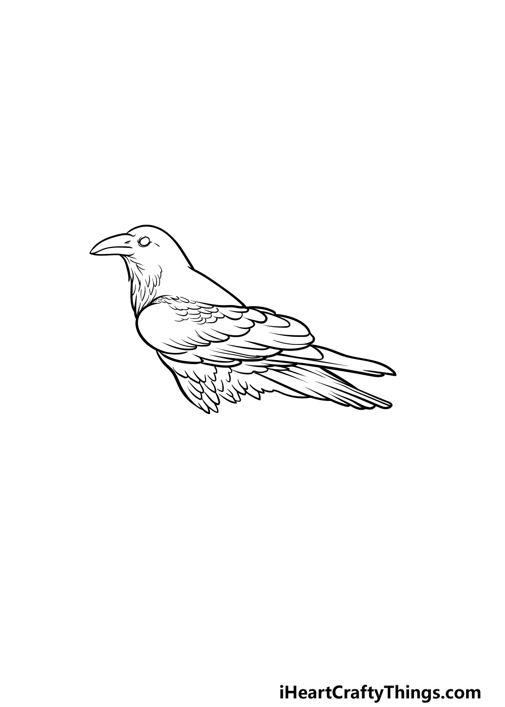 drawing a crow step 4