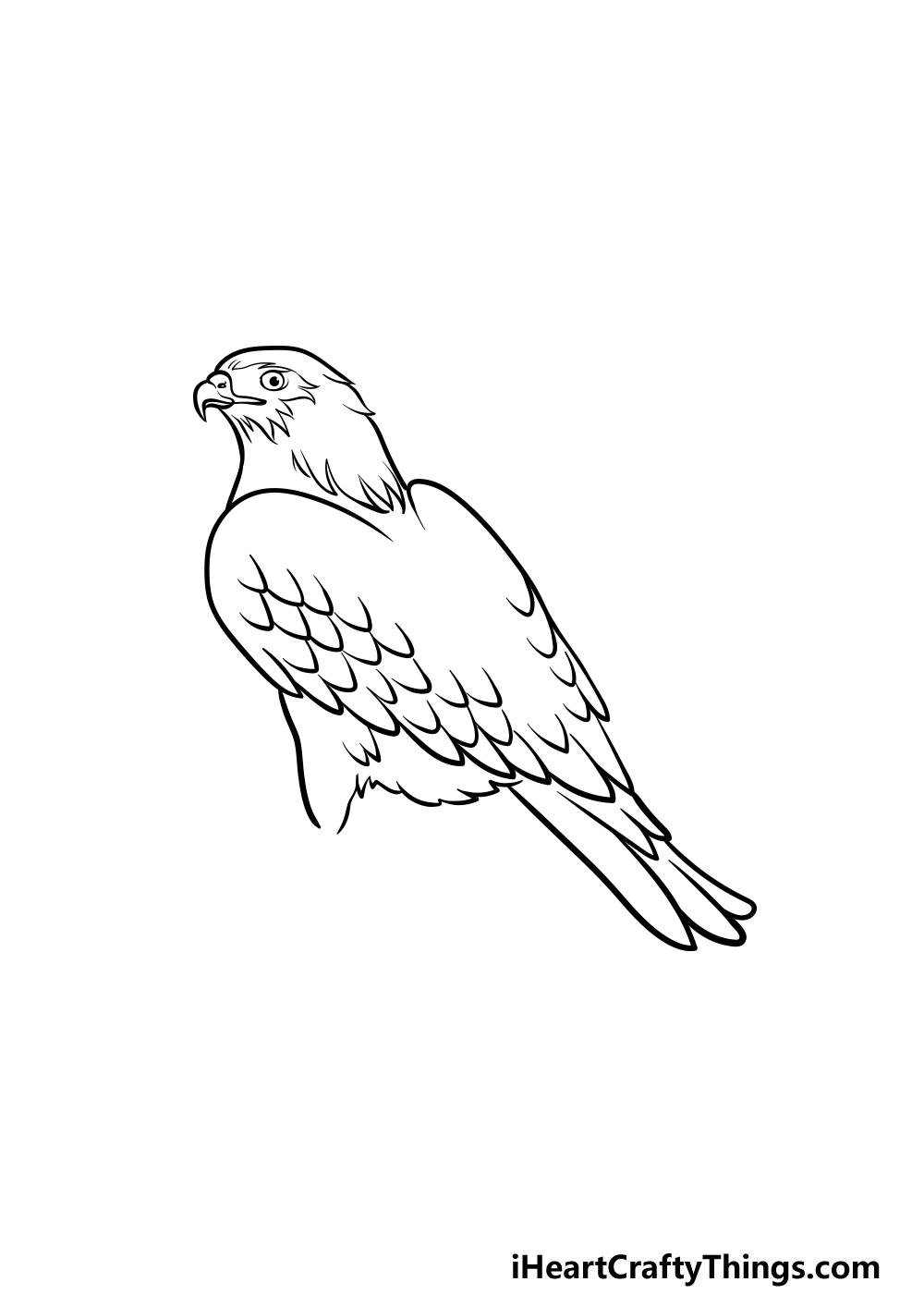 dibujando un halcón paso 4