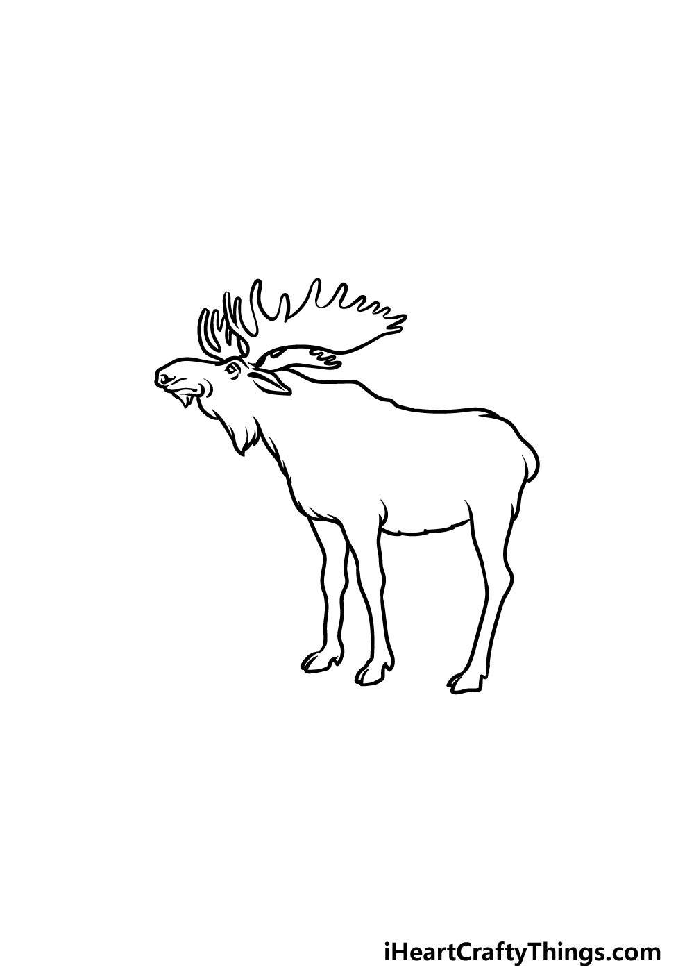 drawing a moose step 4