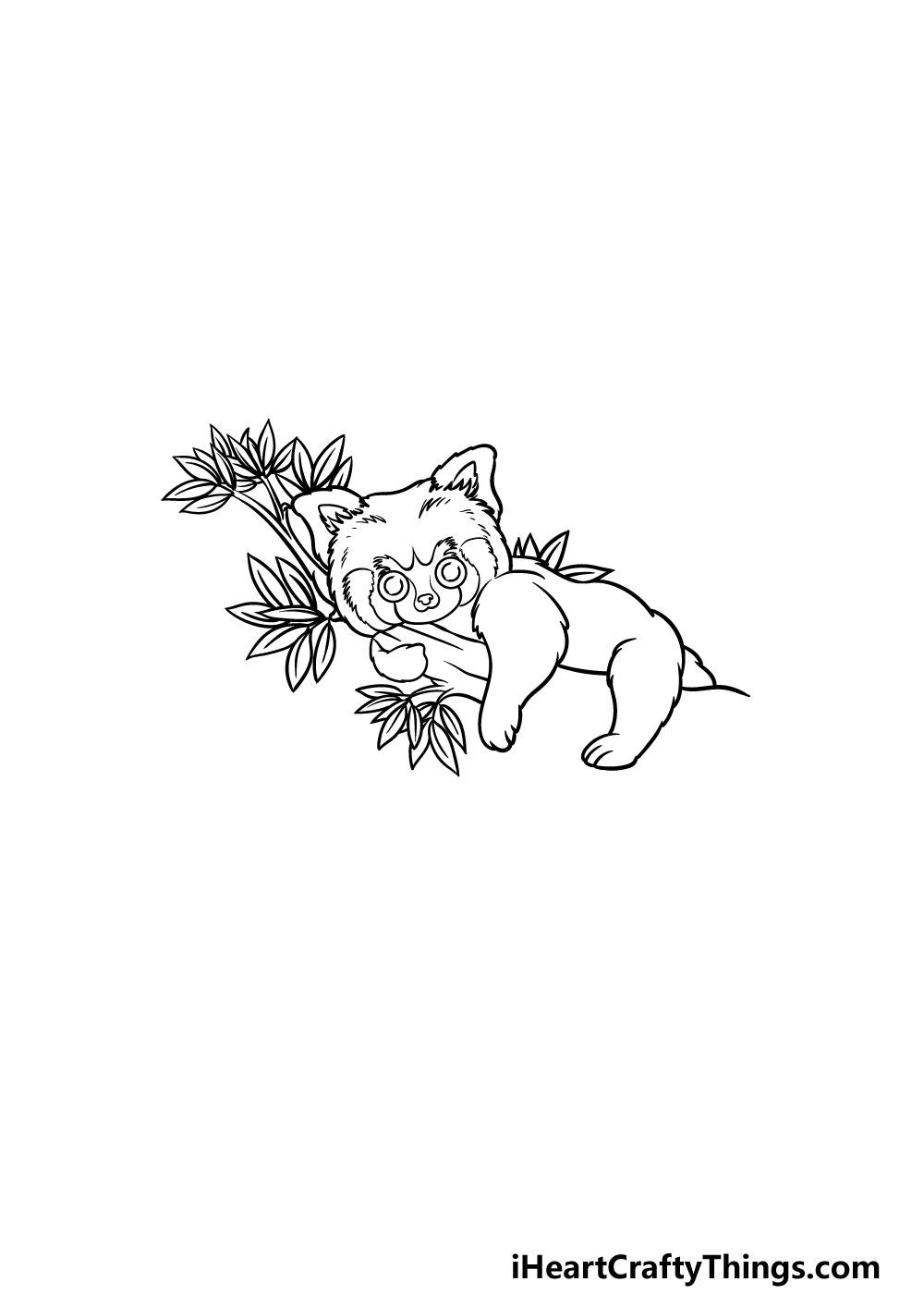 drawing a Red Panda step 4