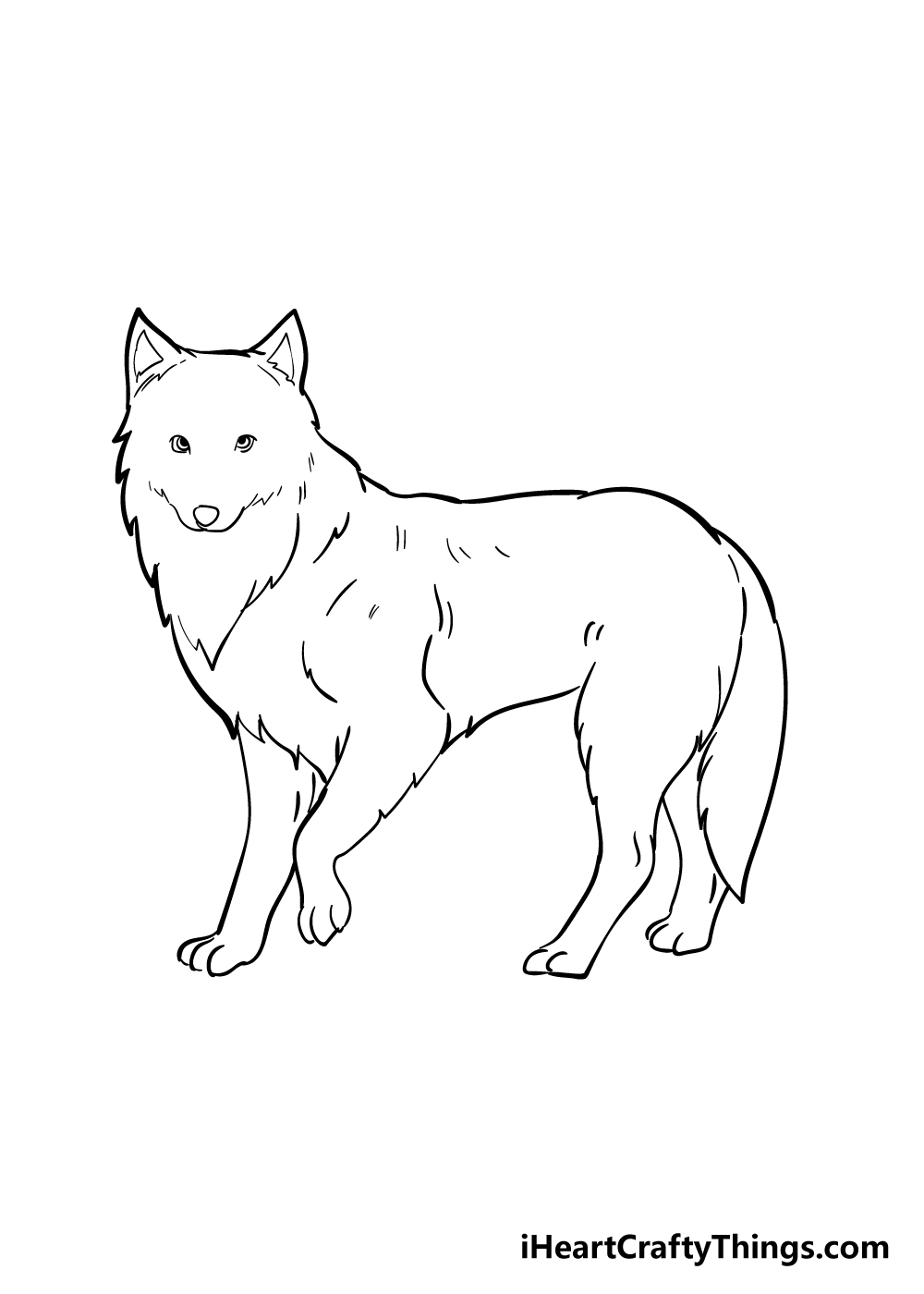 arctic fox drawing step 5