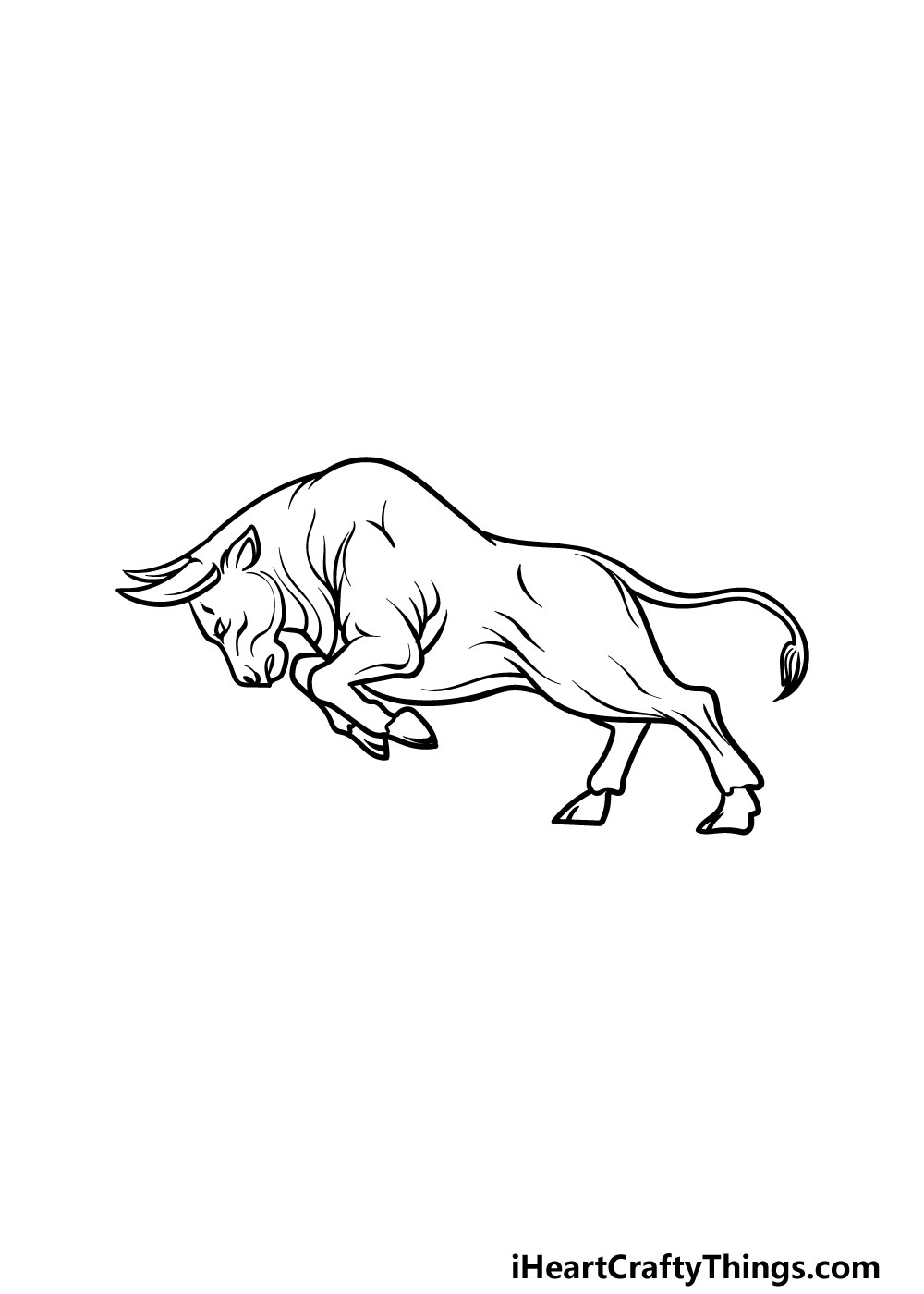 drawing a bull step 5