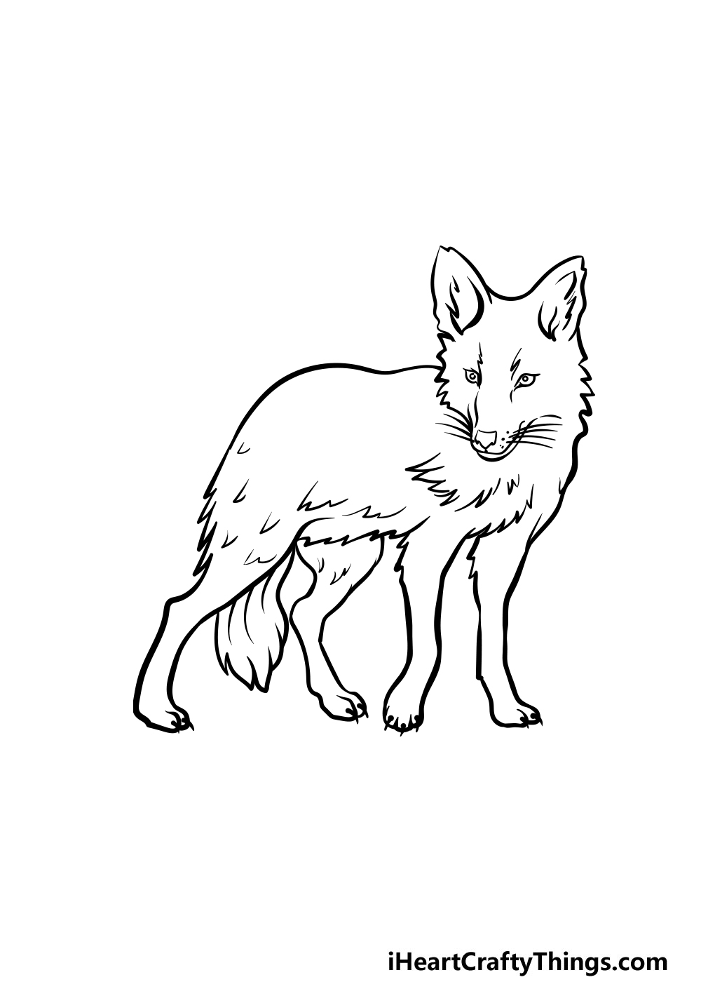 drawing a coyote step 5