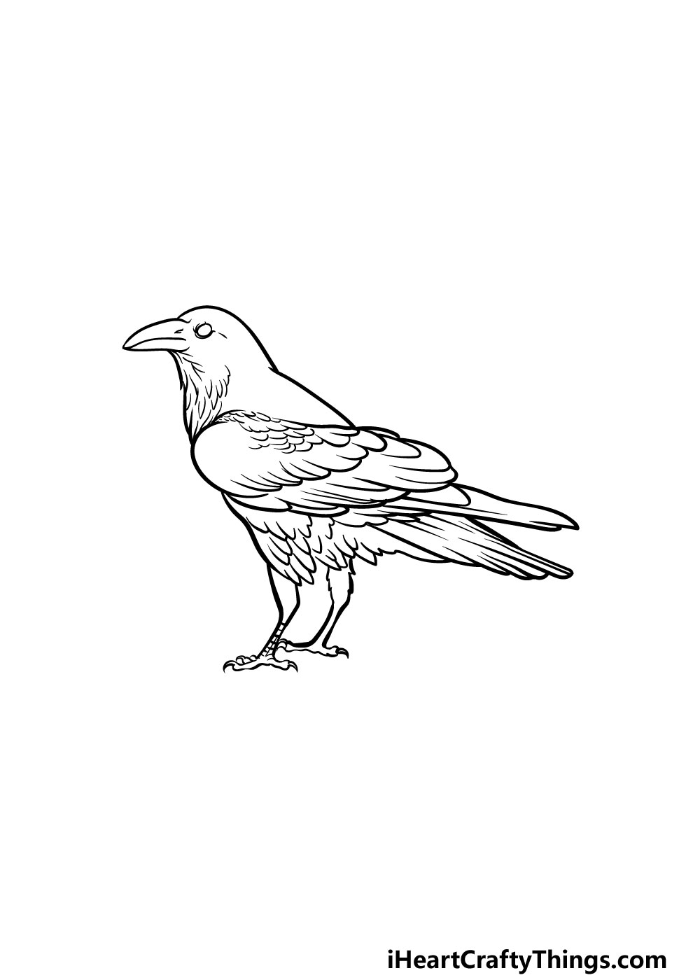 drawing a crow step 5