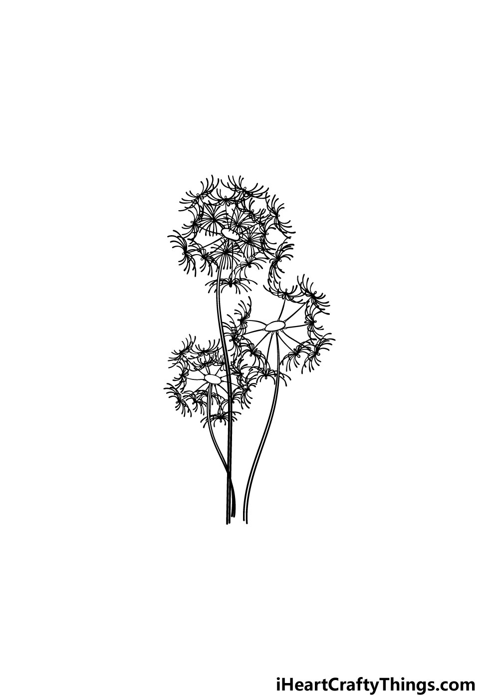 drawing a dandelion step 5