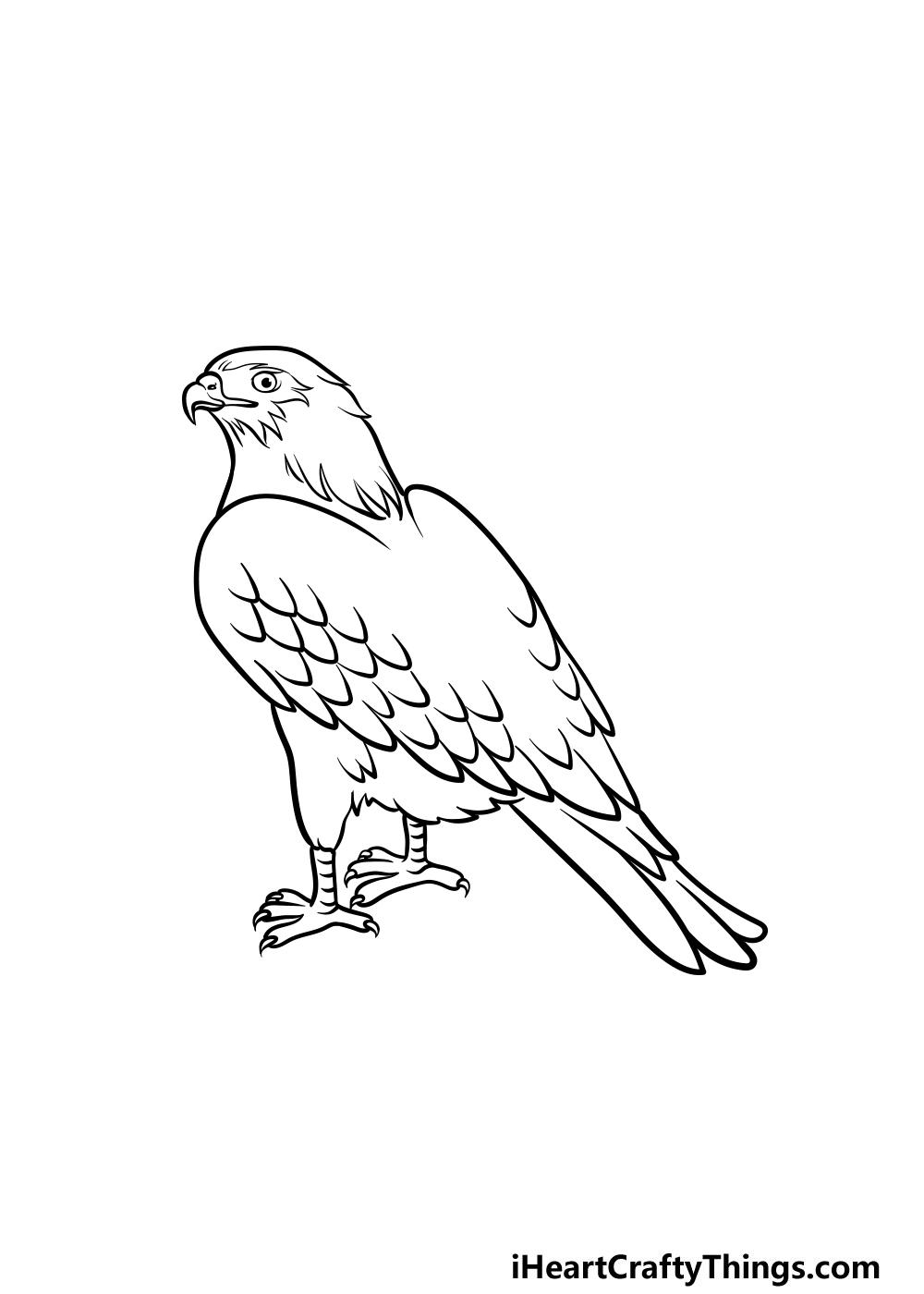 dibujando un halcón paso 5