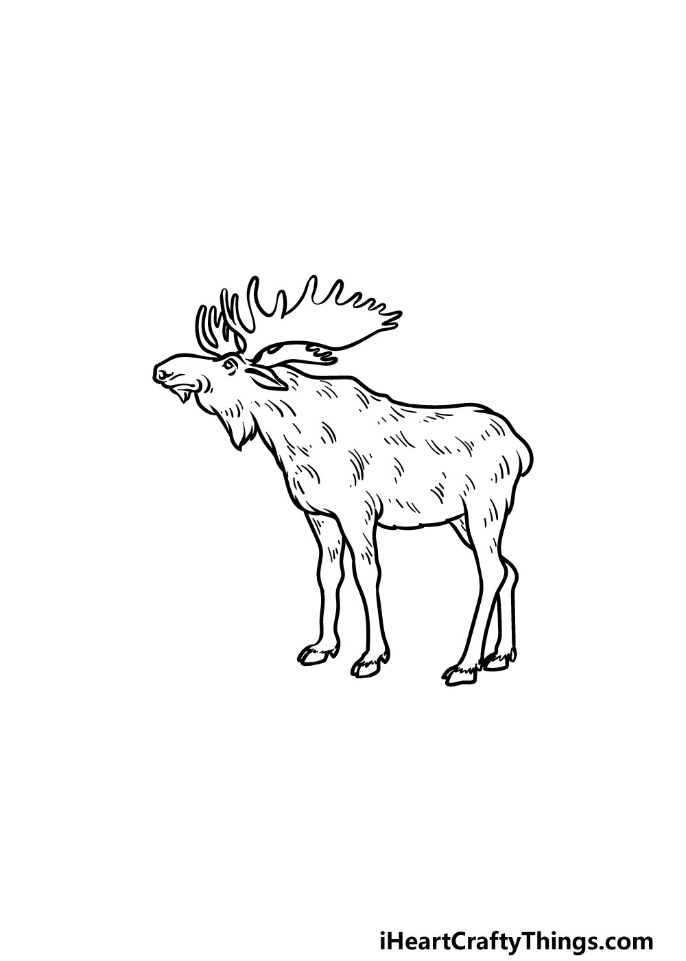 drawing a moose step 5