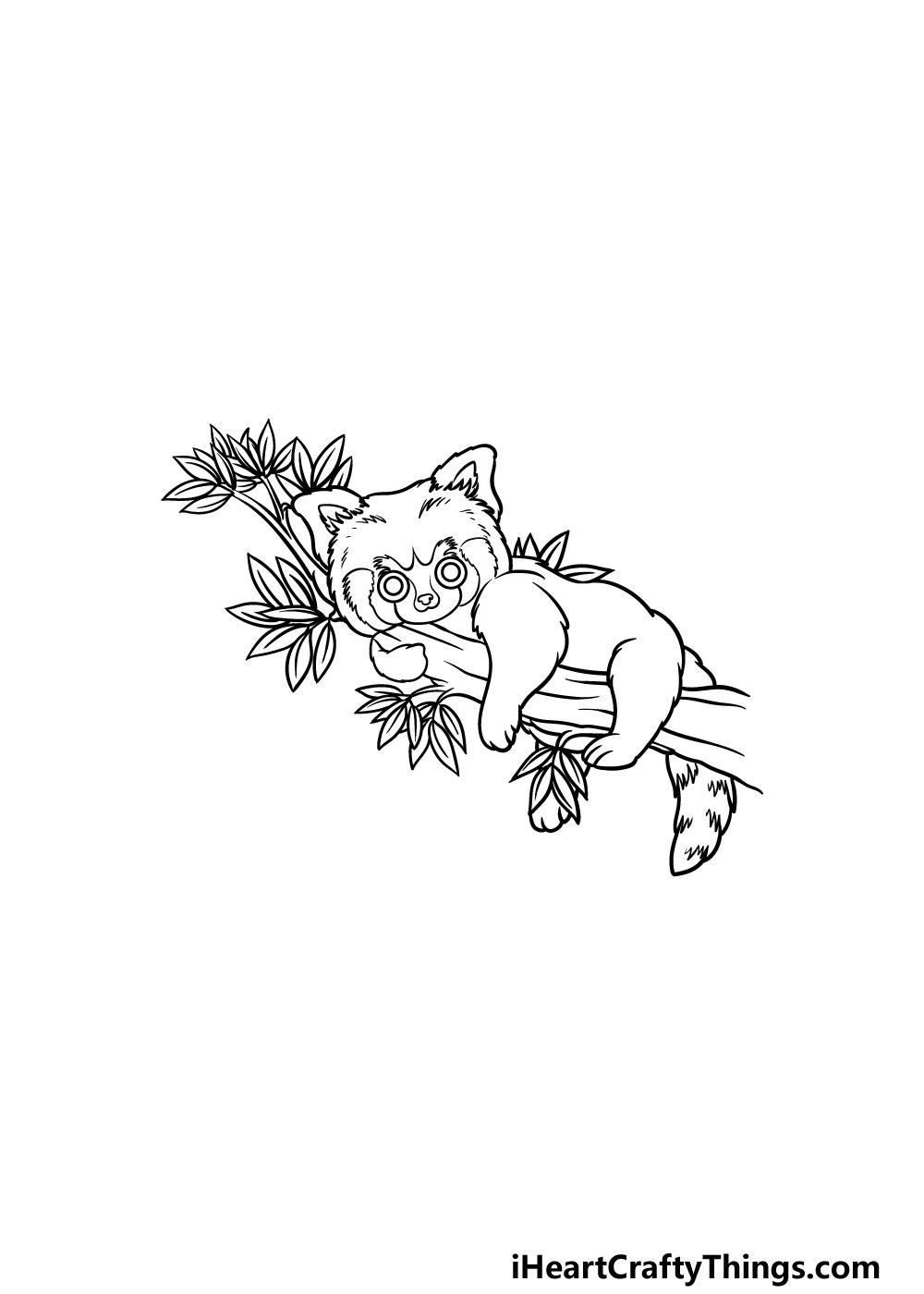 drawing a Red Panda step 5